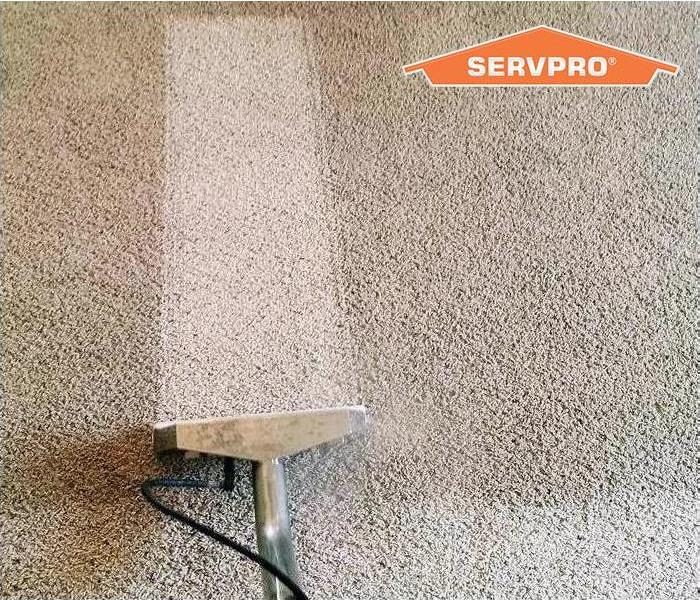 Close up of carpet cleaning with SERVPRO logo