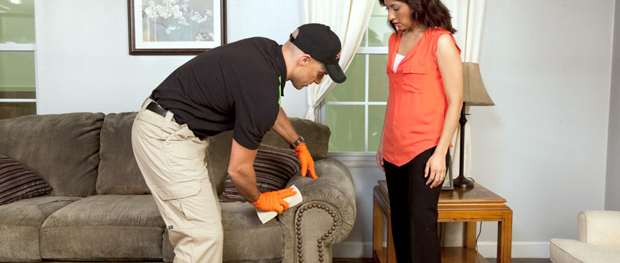 Sterling Heights, MI carpet upholstery cleaning